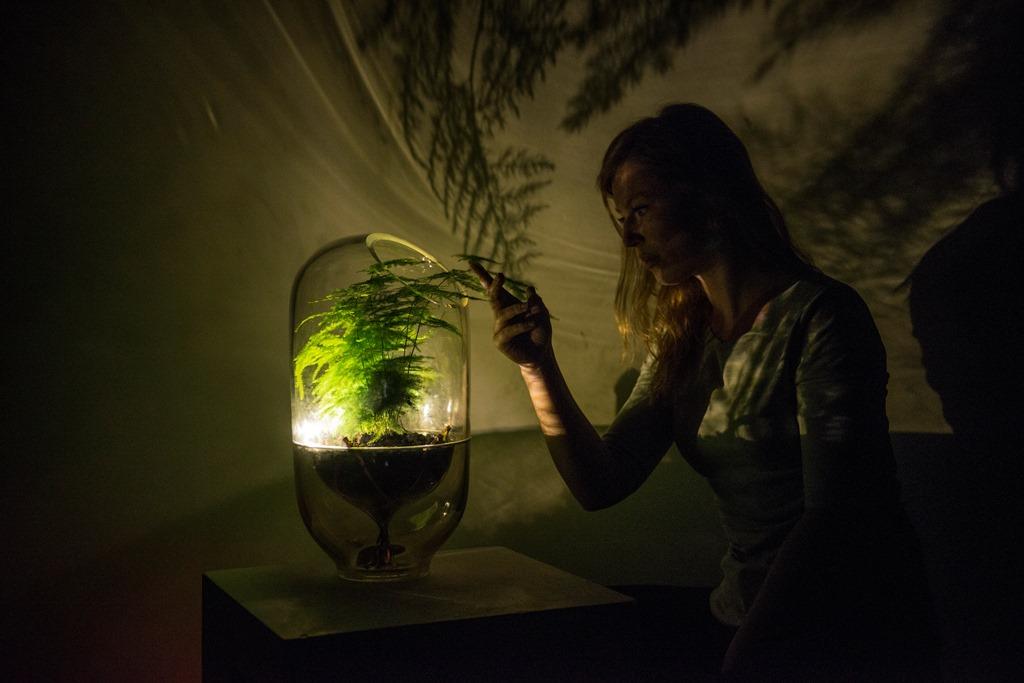 Living Light. Come si può trarre energia dalle piante.